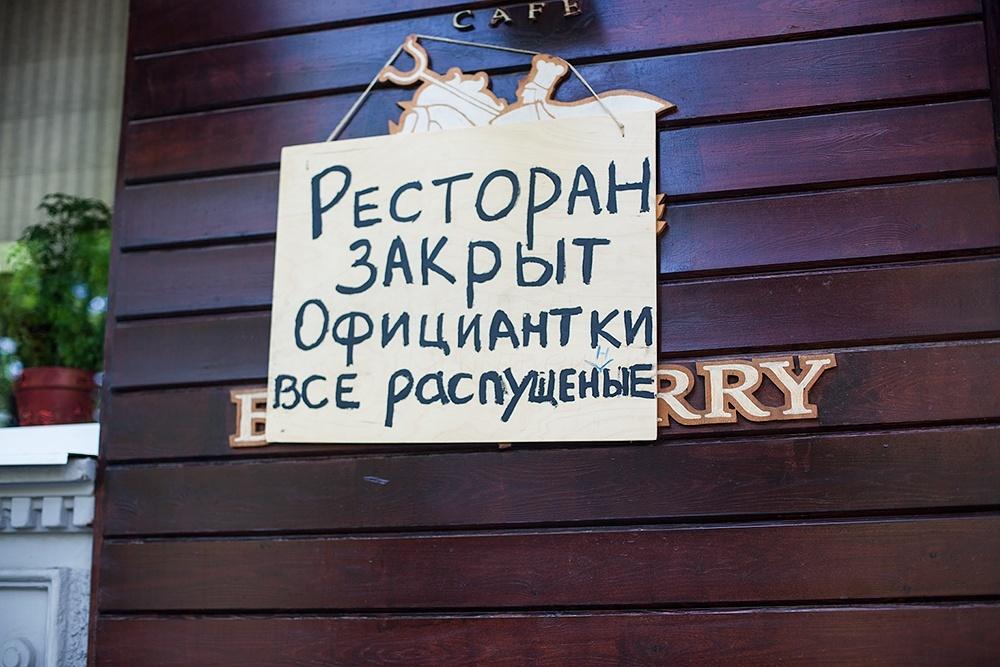 Фото Васи Синичкинка. Кублог
